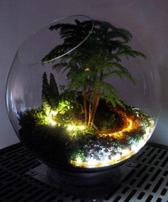 The Mobile Plant Ambassador