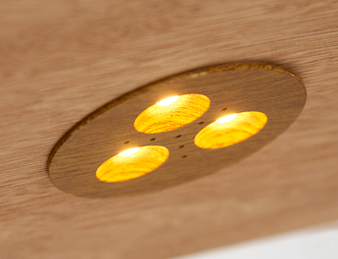 Recessed LED lighting with wood finish puck